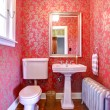 Stock Photo: Luxury red and gold small bathroom with silver radiator.