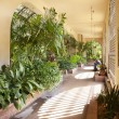 Balboa botanical building in San Diego, CA. - Stock Photo