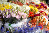 Flowers at the outdoor market stand. — Stock Photo
