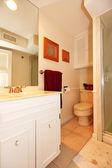 Kleine eenvoudige witte badkamer met douche en wastafel — Stockfoto