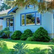 Blue old craftsman style house behind the tree — Stock Photo