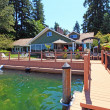 Stock Photo: Lakefront green one story house with dock and large deck.