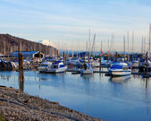 Marina with boats and Mt.Ranier in Tacoma, WA. — Stock Photo