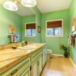 Stock Photo: Green outdated bathroom interior.