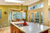 Green large country kitchen with forest view. — Stock Photo