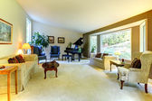 Large living room wit piano and window — ストック写真