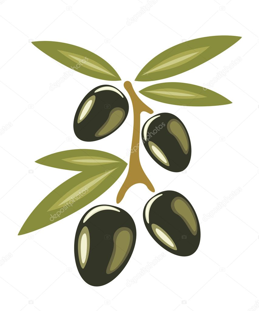 Stylized olive branch symbol, icon isolated vector illustration on a white background — Stock Vector #9423239