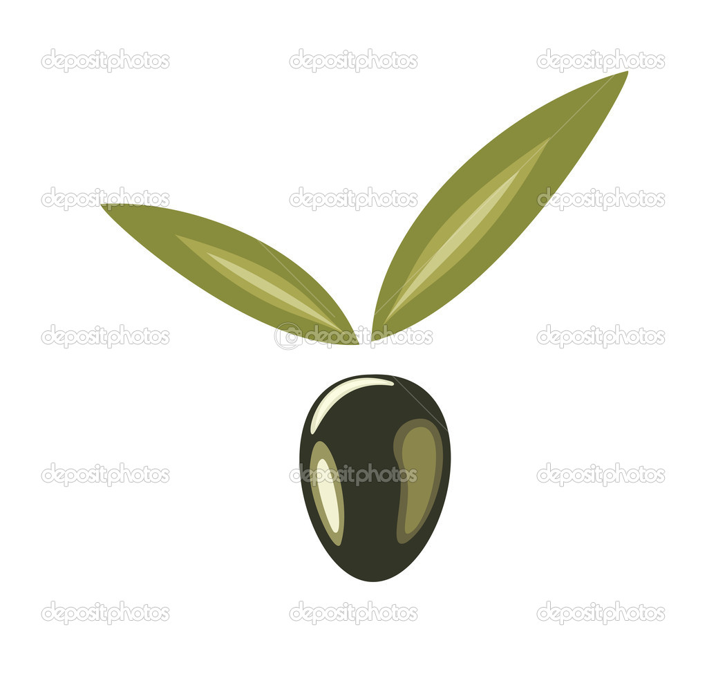 Stylized olive symbol, icon isolated vector illustration on a white background  Stock Vector #9423247