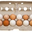 Egg Variety — Stock Photo