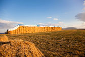 Hay Stack — Stock Photo