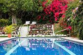 Private Swimming Pool — Stock Photo