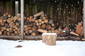 The Wood Shed — Stock Photo