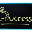 Success word handwritten with chalk on a blackboard with clipping path. — Stock Photo #10183524