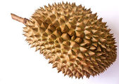 Durian isolated on the white. — Stock Photo