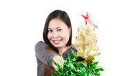 Dáma s vánoční dárek. — Stock fotografie