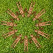 Vintage symbol on the grass field. — Stock Photo #10494249