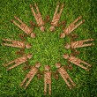 Vintage symbol on the grass field. — Stock Photo #10494272