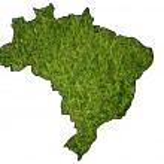 Brazil map symbol from grass. — Stock Photo #9640051