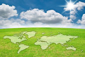 World map on grass field. — Stock Photo