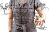 Lady business spingendo il diagramma servizio web sulla lavagna. — Foto Stock