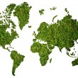 World map background with grass field. — Stock Photo #9753986