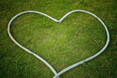 Heart symbol on the green grass field — Стоковое фото