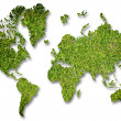 Grass world map on the white background. — Stock Photo