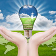 Hand putting light bulb for save world. — Stock Photo