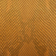 Gold python snake skin texture background. — Stock Photo