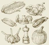 Stel groenten handgetekende — Stockvector