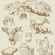 Farm - hand drawn set - Imagen vectorial