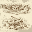 Village houses sketch with food - Vektorgrafik