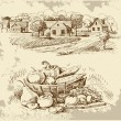 Village houses sketch with food - Stockvectorbeeld