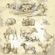 Farm collection-handmade drawing - Imagens vectoriais em stock