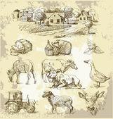 Dibujo hecho a mano-colección granja — Vector de stock