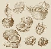 Owoce - ilustracja — Wektor stockowy