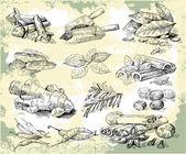 Kräuter-gewürze — Stockvektor