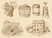 Vineyard-original hand drawn collection — Vector de stock