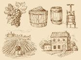Vineyard-original hand drawn collection — Stock Vector
