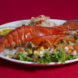 Dish of Lobster — Stockfoto