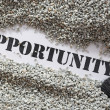 Opportunity -- Treasure Word Series — Stock Photo #10461624