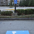 Disable parking stall — Stockfoto