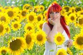 Blooming sunflower field — Stock Photo
