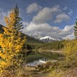 Rocky Mountains Kananaskis Alberta — Stock Photo #8101481
