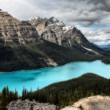 Peyto Lake Alberta Canada — Stock Photo