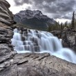 Athabasca Waterfall Alberta Canada — Stock Photo #8101567
