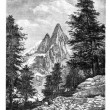 The needle of the Dru and the Aiguille Verte, in front of Montan — Stock Photo