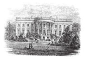 White house in Washington, D.C America vintage engraving. — Stock Vector