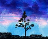 Cielo vibrante — Foto de Stock