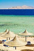 Empty beach with sunshades — Stock Photo